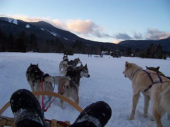 Valley Snow Dogz, offering a taste of Mushing in NH